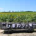 2005natsunohana_035